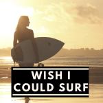 Breadwinning Six Figure Millionaire Moms Wish I Could Surf
