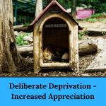 Deliberate Deprivation - Increased Appreciation