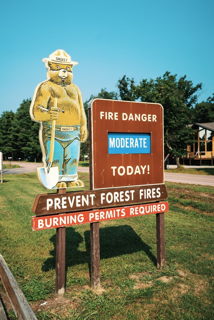 Only you can prevent financial forest fires