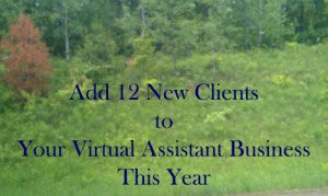 Add 12 New clients to your virtual assistant business this year