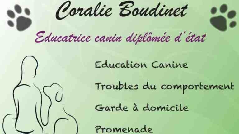 Entretien avec une coach en éducation canine !