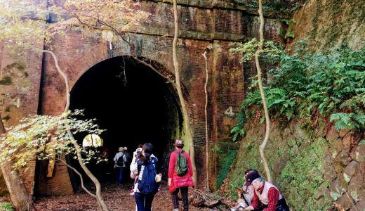 期間限定一般公開の廃線跡、愛岐トンネル群の紅葉がすばらしい