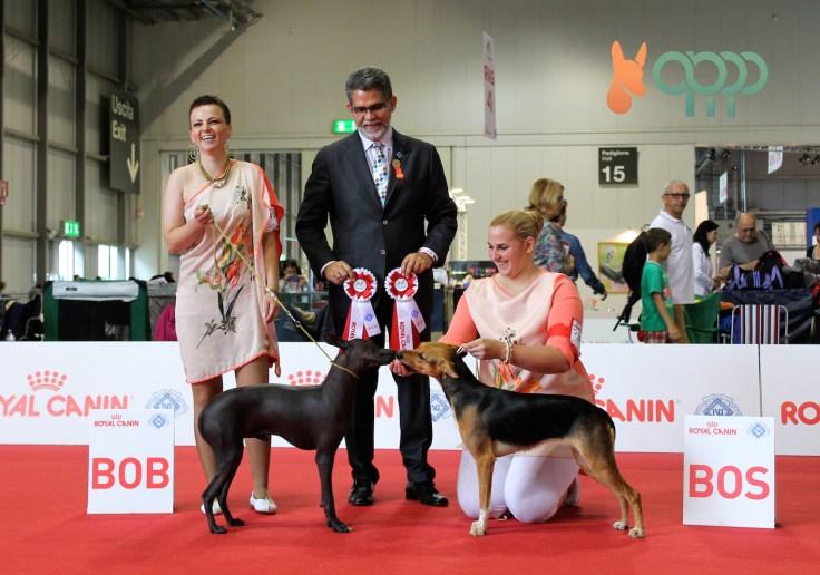 Lidija von Richet (Croacia), Roberto Velz Pico (juez canino - FCI) y Anja Čondrič (Croacia) con Nuevo Callao Pazzda y Magenta Sweety Punk.