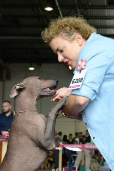 Julie Segaert (éleveuse des chiens nus) et Poppers Sweety Punk. Photo by Mauricio Alvarez