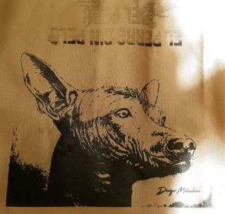 "Obra: ""Samin"" (retrato) del artista plástico Diego Manchez Raymondi."