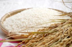 お米の保存場所