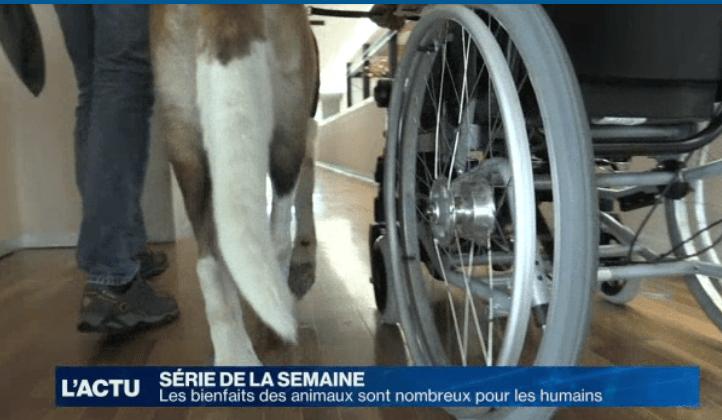 Sante_sarine