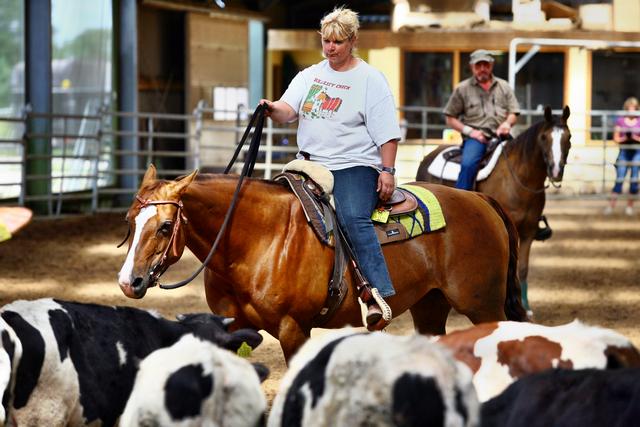 Jac bij de koeien