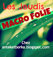 anteketborka.blogspot.com,macro 001c