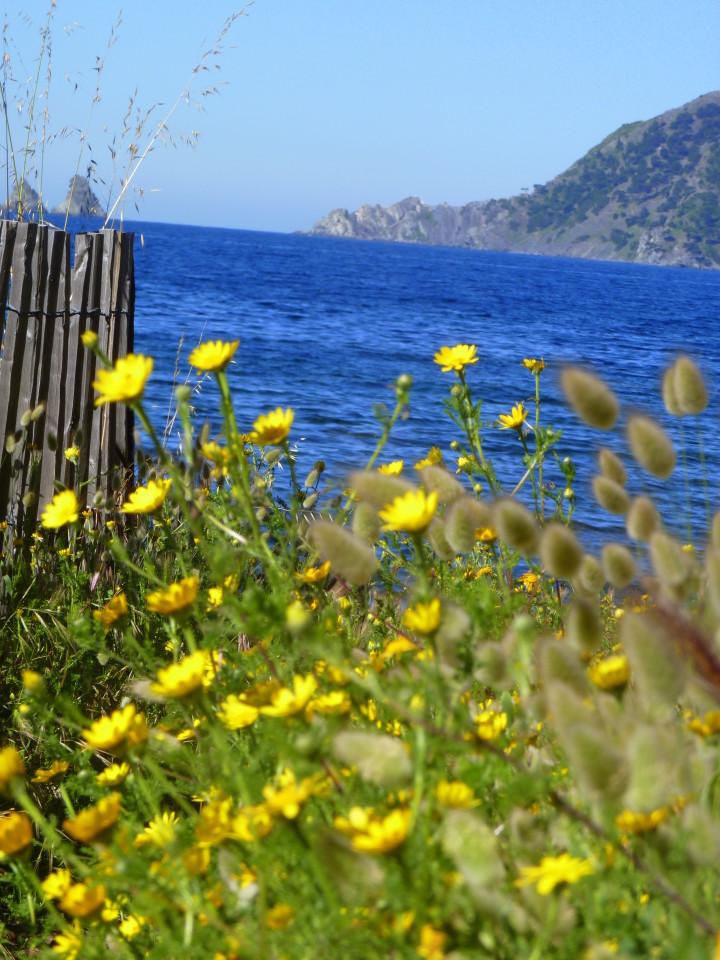 paysage-bord-de-mer