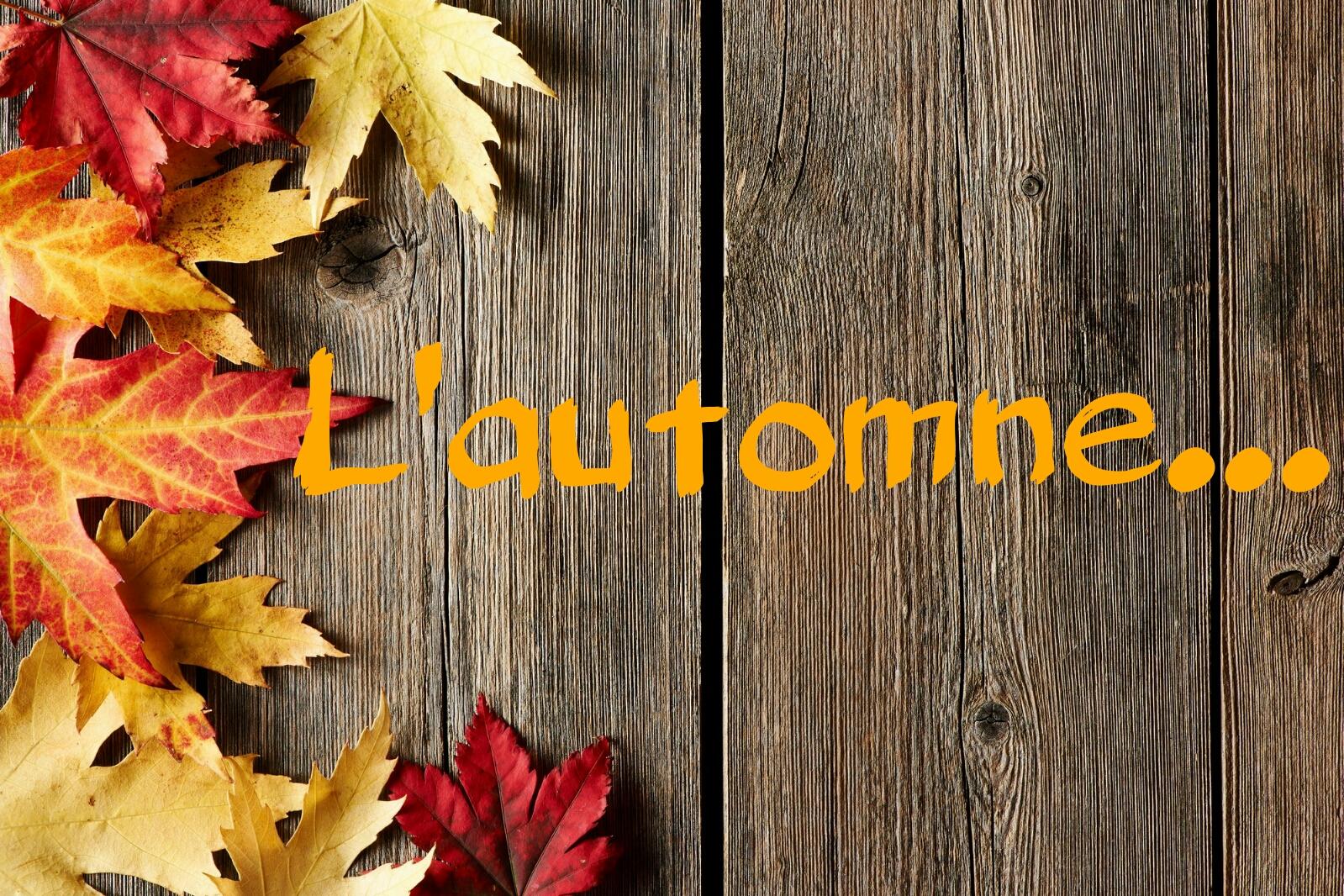 l-automne