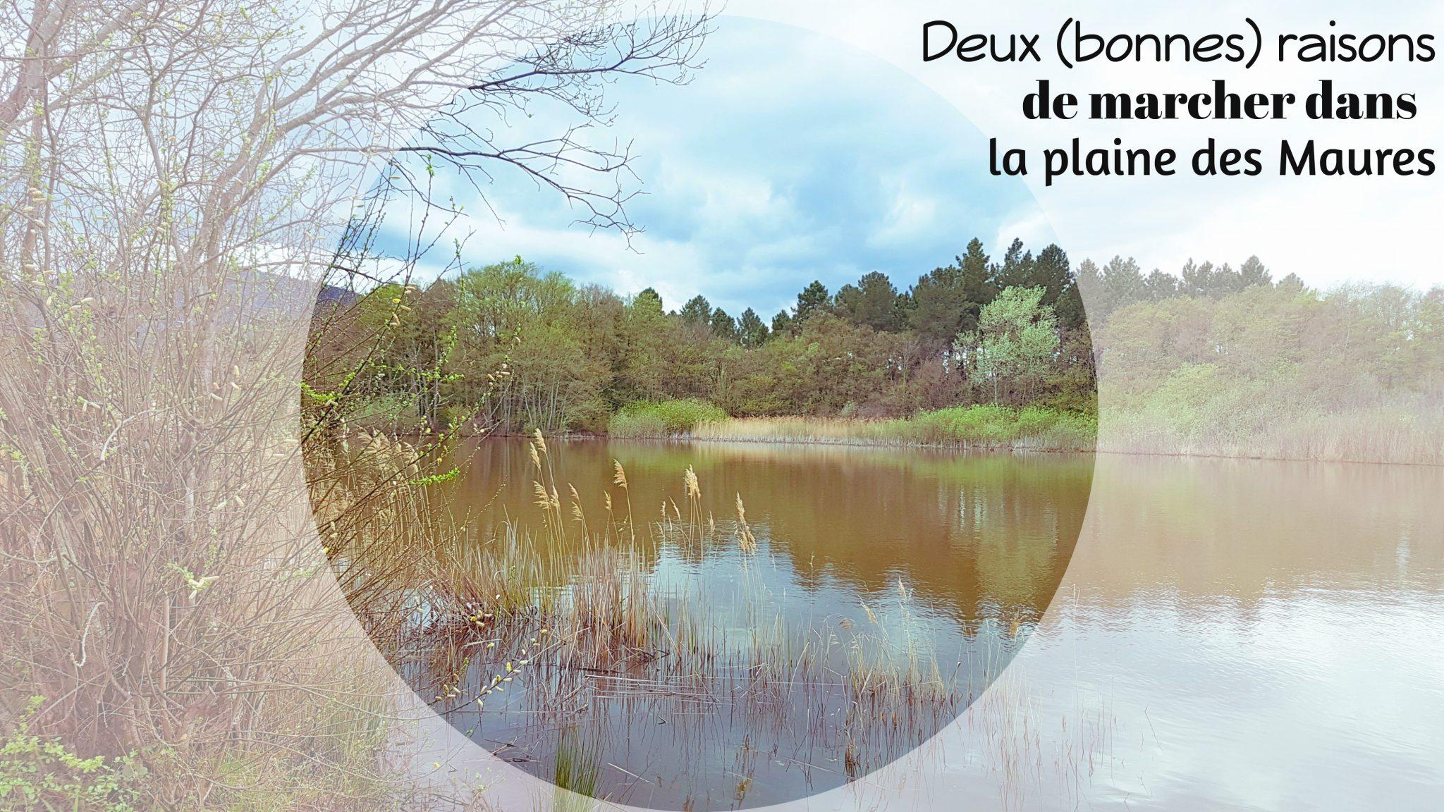 la-plaine-des-maures