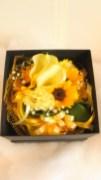 商品No.350013/BOX参考価格:5400円