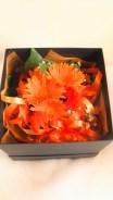 商品No.350011/BOX参考価格:5400円
