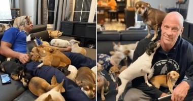 Man-Who-Makes-Fun-Of-Tiny-Dogs-Gets-Saved-By-A-Chihuahua-Devotes-His-Life-To-Rescuing-Them-featured