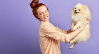 Why-your-dog-is-farting,-and-how-to-clear-the-air