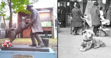 The-True-Story-Of-Hachiko,-A-Loyal-Dog-That-Waited-Over-9-Years-At-The-Train-Station-For-His-Deceased-Owner