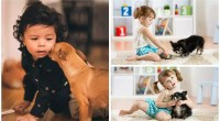 Are Chihuahuas Good with Kids?