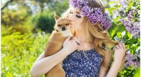 Does Human Perfume Affect Dogs?