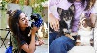 28 percent of us prefer our pet to our partner