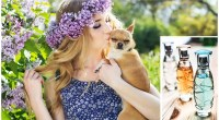 Dog Perfume DIY: Safe and Effective Scents for Your Pup