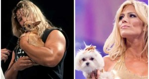 10 Best Animals In WWE History, Ranked