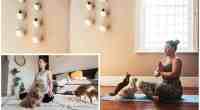 The Benefits of chihuahua Dog Meditation