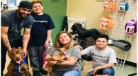 'Bonded' Chihuahua, pit bull terrier up for adoption in Arizona find their fur-ever home