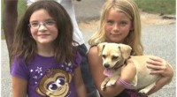 Chihuahua finds missing Georgia girls