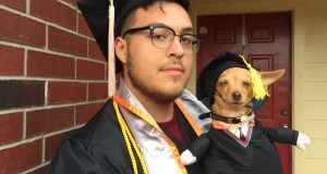 Graduating with a Chihuahua