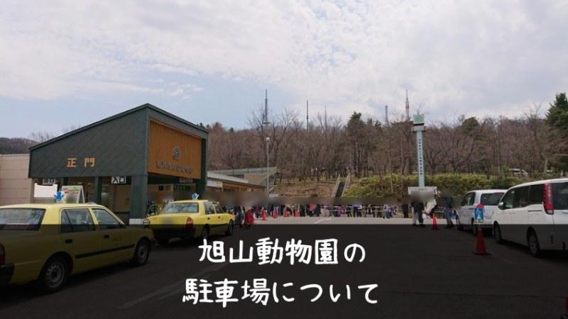 旭山動物園の駐車場はどこがおすすめ?人気スポットに近いのは西門・正門で、比較的空いているのは東門