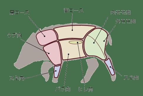 イノシシの部位