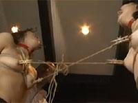 エログロの乳首責め満載のシネマジックの作品が30%OFFセール開始!