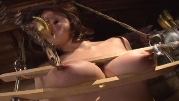 ニップルクランプで乳首調教
