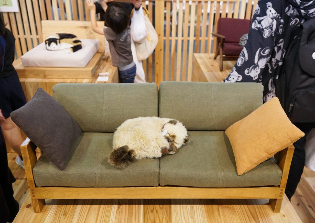 福岡県大川市 木工祭 ネコ家具EXPO展示会場 御猫様