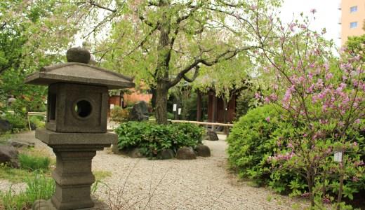 【亀戸】龍眼寺へ行ってきた【東京の寺院】