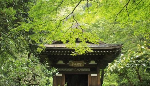 【北鎌倉】円覚寺を満喫してきた【神奈川のお寺】