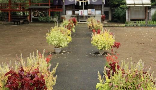 【常総】茨城県西神社巡り~常総にある3社編~【茨城の神社】