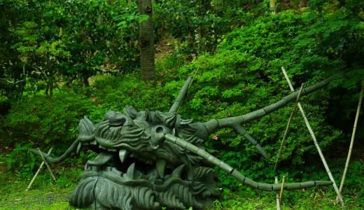【東山】新緑の季節の高台寺を満喫してきた【京都の寺院】