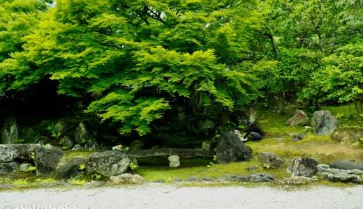 【東山】秀吉の妻ねね終焉の地 圓徳院へ行ってきた【京都の寺院】