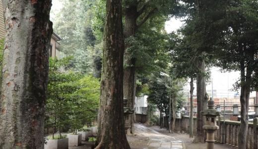 【荻窪】荻窪の地名の由来になったお寺!光明院へ行ってきた【東京の寺院】