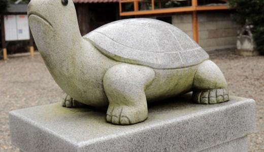 亀の像がいっぱい!磐裂根裂神社へ行ってきた【栃木の神社】
