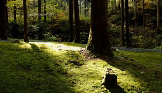 【日立】日本屈指のパワースポット!御岩神社へ行ってきた【茨城の神社】