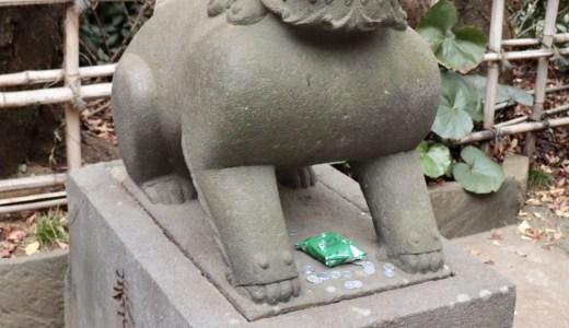 面白い狛犬がいる市谷亀岡八幡宮へ行ってきた【東京の神社】