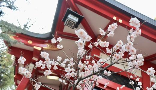 【世田谷】自然豊かな六所神社へ行ってきた【東京の神社】