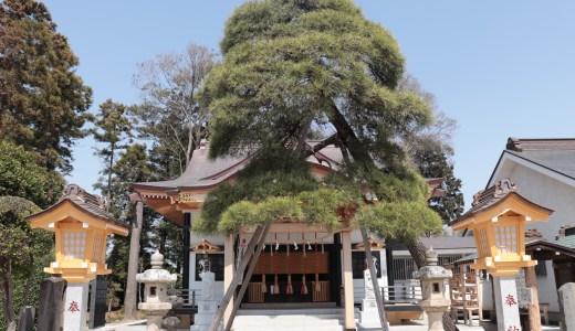 【松戸】優しい対応とユニークな御朱印が話題の神社!高靇神社へ行ってきた【千葉の神社】