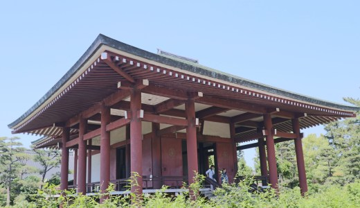 法隆寺へ行ったら合わせて訪れたい尼寺!中宮寺へ行ってきた【奈良の寺院】