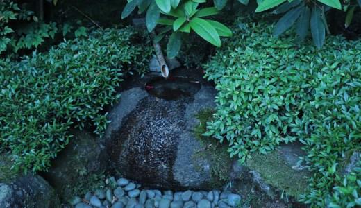 【奈良の寺院】歴史のある見所が多いお寺!當麻寺へ行ってきた【西南院編】