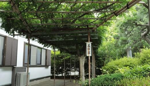 【藤沢】白旗神社へ行ってきた【神奈川の神社】