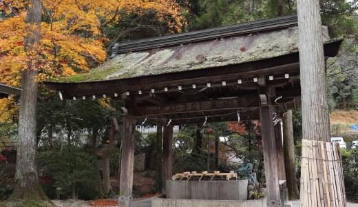 【犬山】秋の大縣神社へ行ってきた【愛知の神社】